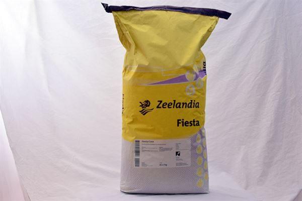 Fiesta Corn Bread Mix